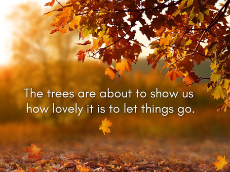 Embracing Change: If Leaves Could Talk