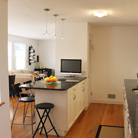 Belmont kitchen renovation