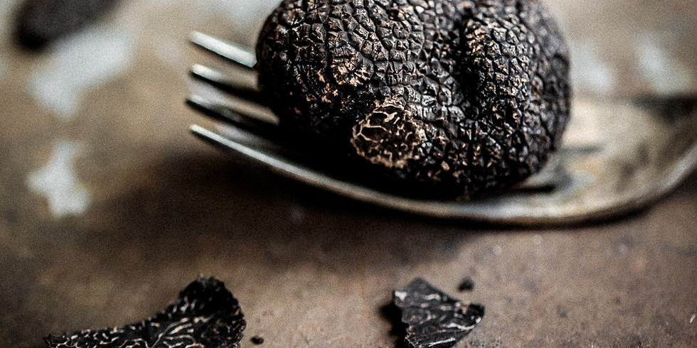 Truffle Hunt & Degustation