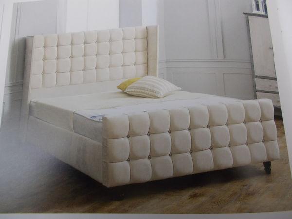 saffron bed.JPG