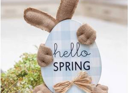 Hello Spring Huggy Bunny