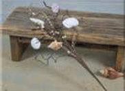 Sea Shells Medium Pick