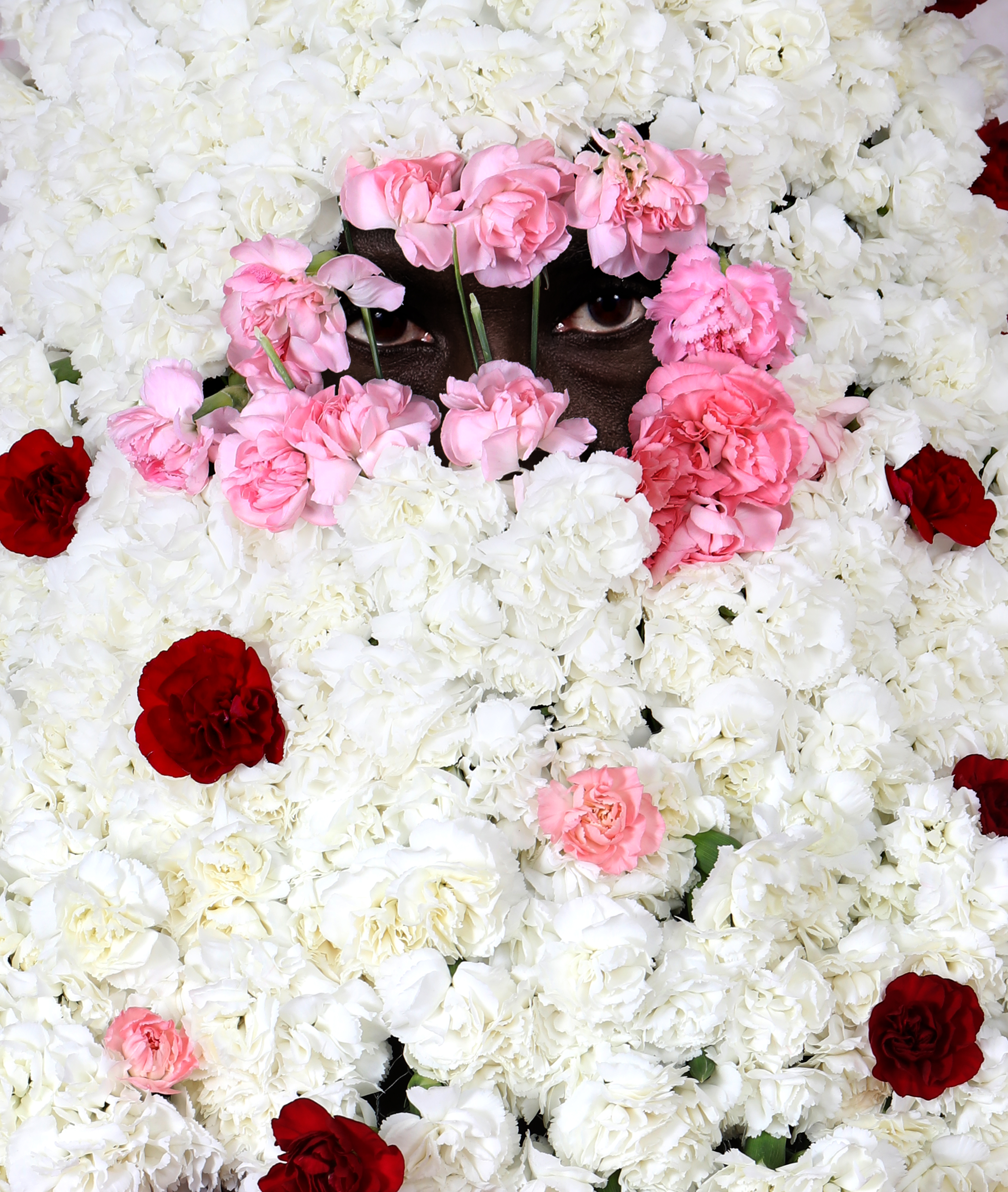 White,pink and red flowers