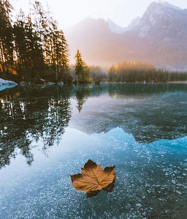 leaf lake.jpg