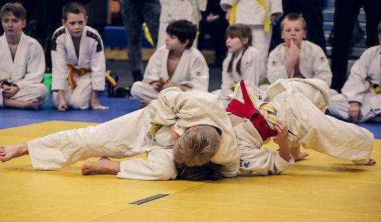 judo-4454835_1280.jpg