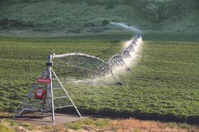 Irrigação eficiente precisa ser sustentável e econômicaCom projeto bem estruturado e a programação