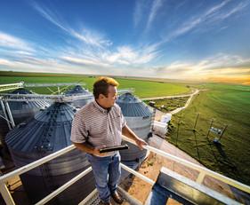 Irrigação à distância com precisão facilita o manejo na fazenda