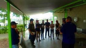 Piccin desenvolve projeto em parceria com alunos de engenharia de produção da EESC
