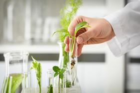 Desenvolvimento de fertilizantes exige tecnologia e alto investimento