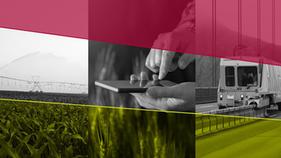 Multinacional de irrigação abre chamada em busca de startups para parcerias