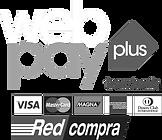 webpay_copy_2048x.png