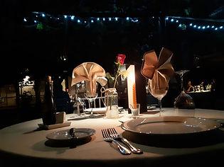 noche-romantica-campo.jpg