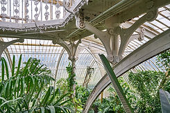 Palm house Kew jan17 46 by Thomas Erskin