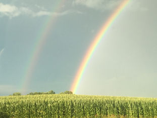 double-rainbows.jpg