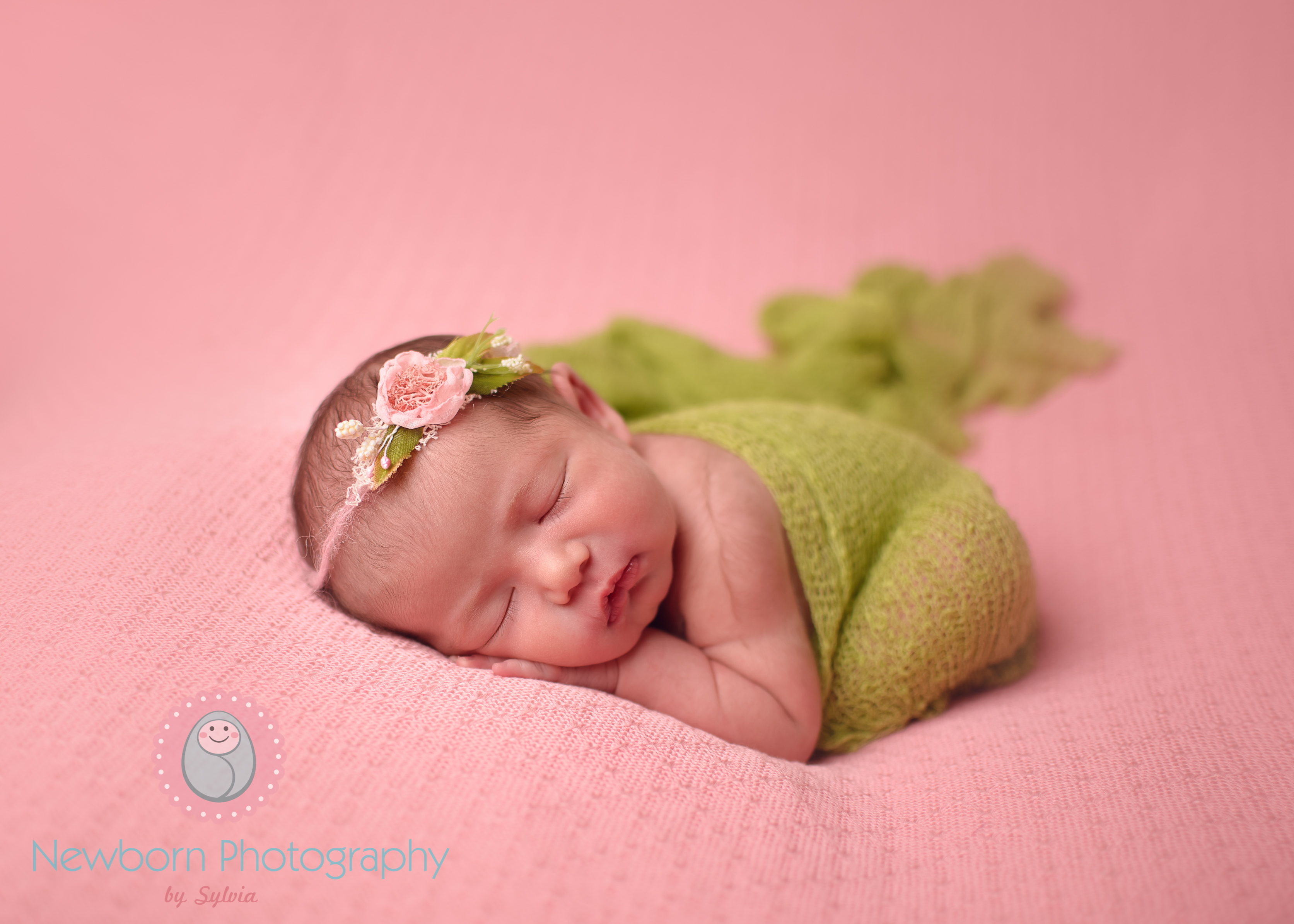 South West Newborn Baby Photography