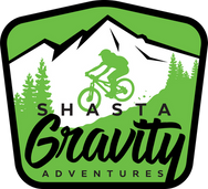Shasta_Gravity_Final_Green (1) (1).png
