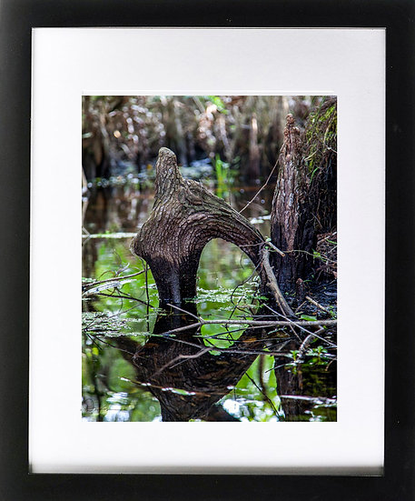 "Everglades III Print with 2"" Mat and Black Frame"