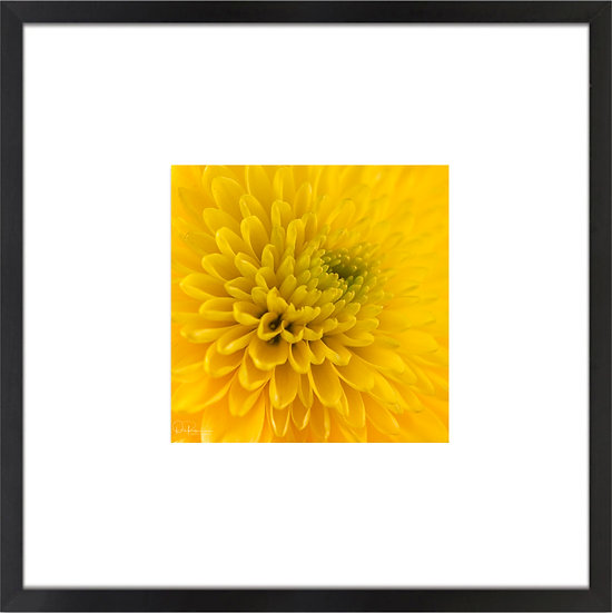 """Mum Print With 4"""" Mat and Black or White Frame"""