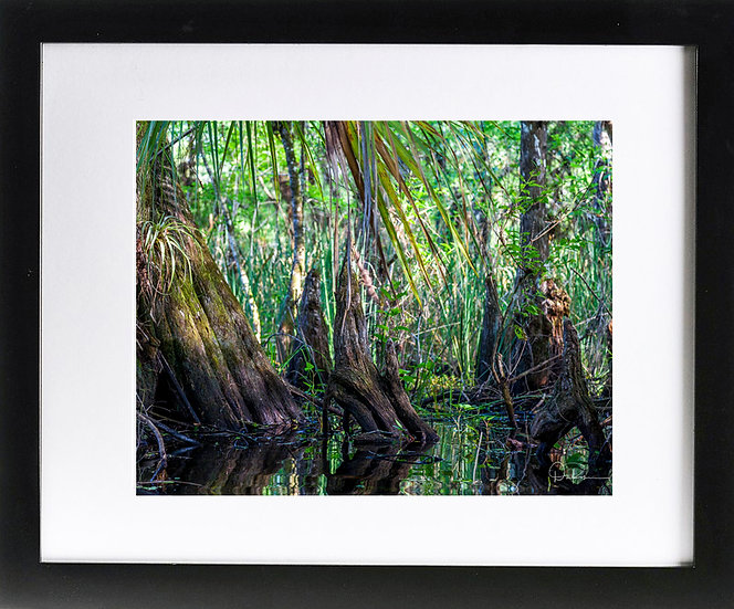 "Everglades I Print with 2"" Mat and Black Frame"