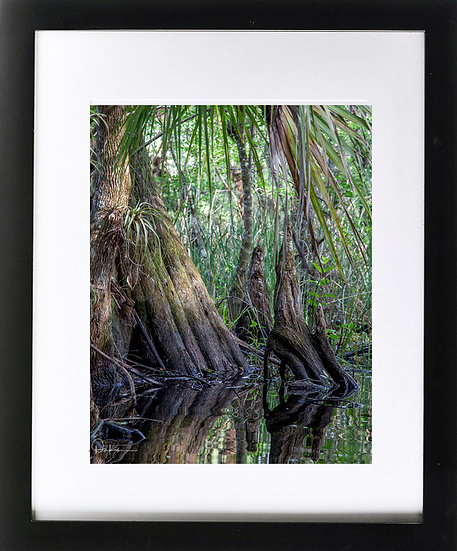 """Everglades IV Print with 2"""" Mat and Black Frame"""