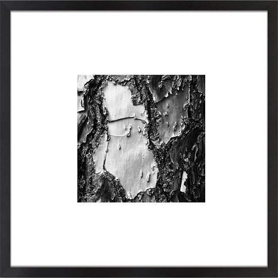 "Black and White Abstract II Print With 4"" Mat and Black or White Frame"