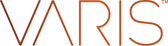 Varis logo.png