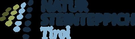nstt_logo_4c_pos.png