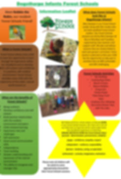 Forest Schools OCT 19.jpg