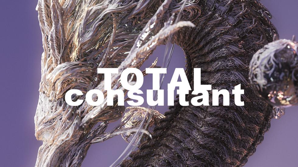 total consultant