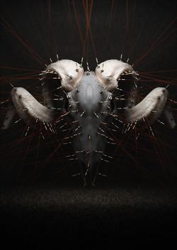 201403