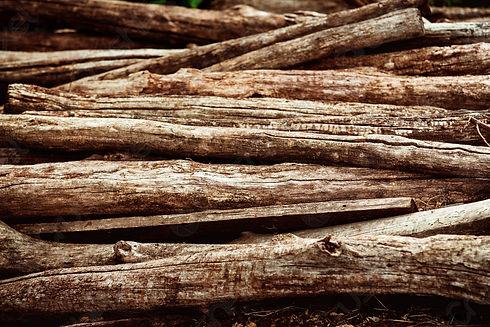 heap-aged-brown-wooden-logs-686361.jpg