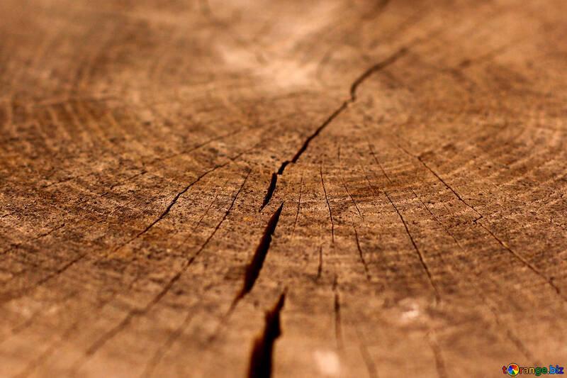 ecology-wood-textures-crack-beam-33251.j