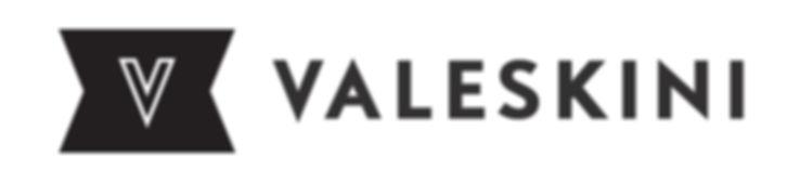 Logo Ziviltechniker DI Valeskini