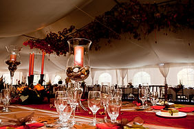 _MG_1398-ledson tent from RH.jpg
