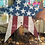 Thumbnail: Americana Lighted Star Post