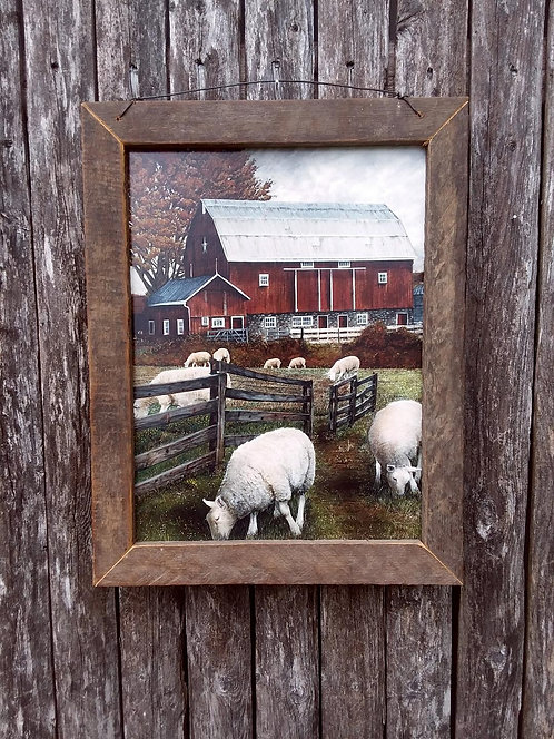 Red Barn & Sheep