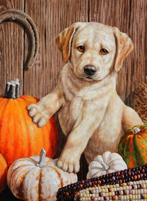 Pumpkin Harvest Puppy Garden Flag
