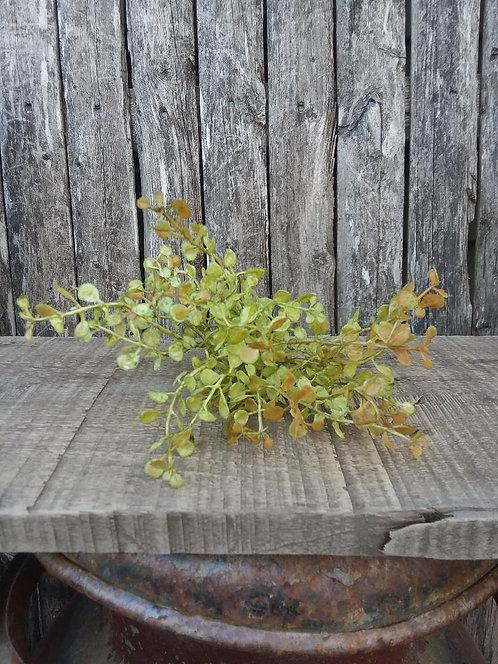 Sm. Baby Grass Pick