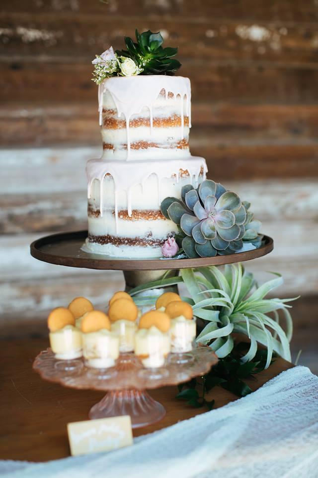 sugar bee succulant cake