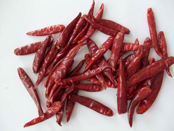 辣椒 Kashmiri Chili flakes are best during winters。