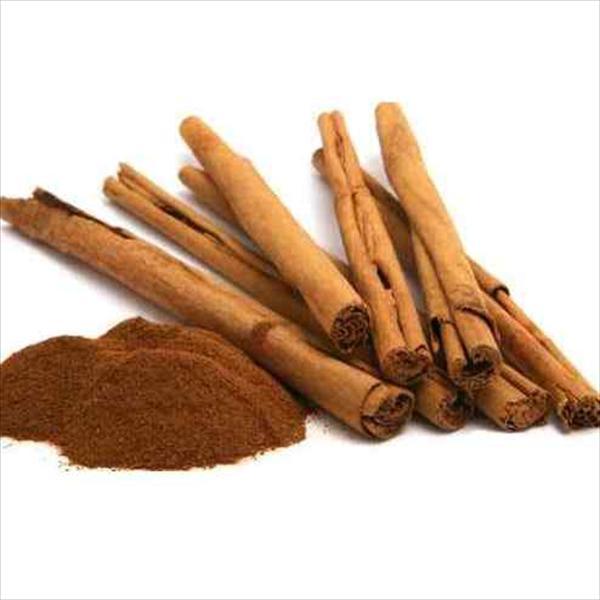 肉桂 Cinnamon | Indian Spices used in Masala tea