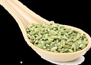 茴香 Fennel seed