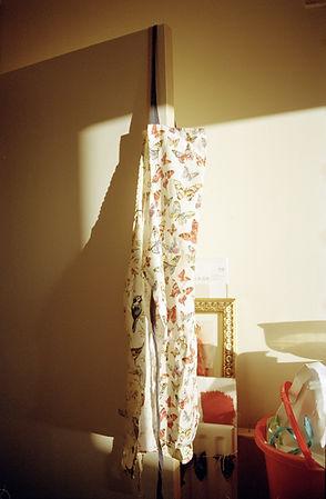 HAGNING apron.jpg