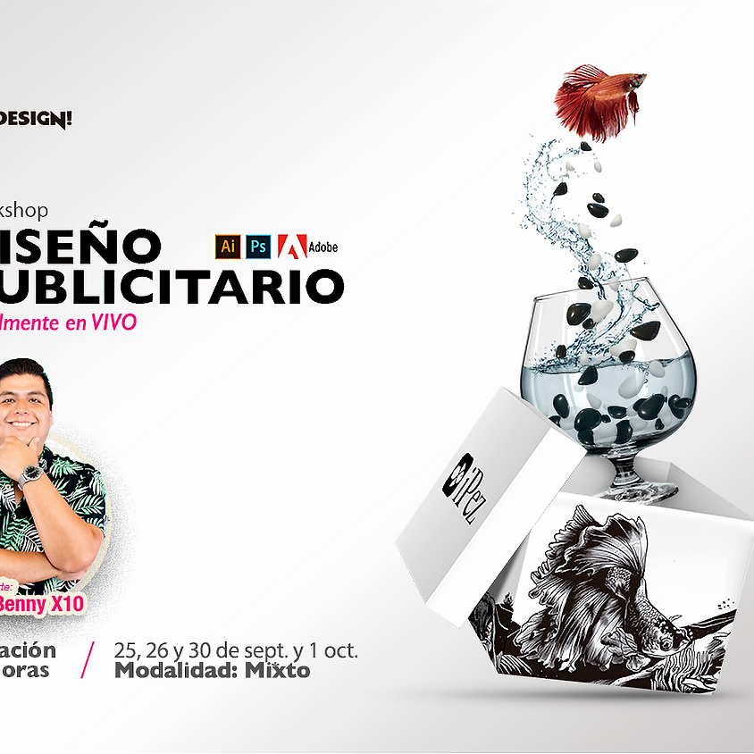 Diseño Publicitario Puebla