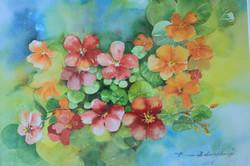 My Garden 2-Sold