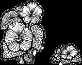 33740682-ramo-de-violetas-flores-y-hojas