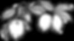 32539955-carta-del-alfabeto-l-una-rama-d