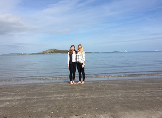 Boat trip around Ireland's Eye