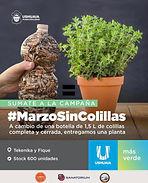 Ushuaia: La ciudad se suma a la campaña ambiental ¨Marzo sin colillas¨