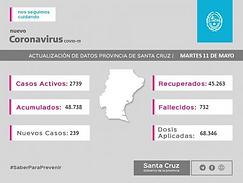 Santa Cruz: 239 nuevos casos de COVID-19 en la provincia